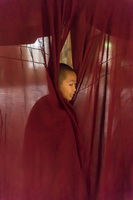 A young novice monk in Inle Lake